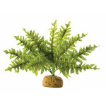 Decor pentru terariu planta Exo Terra Boston Fern Small